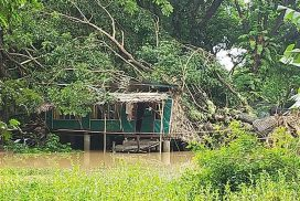 Heavy rains with strong winds destroy 24 houses in Einme Township