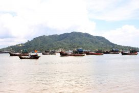 Fishery exports plunge to $536.57 mlnas of 28 May