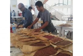 Myanmar ships over 136,000 tonnes of pigeon peas as of 25 June