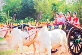 Ox carts valued as  Myanmar's traditional cultural heritage