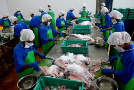 Fishery exports plummet to $606 mln as of 9 July