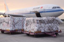 One million units of COVID-19 vaccines arrive from China in second batch