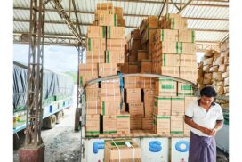 Importation processes of medical supplies arranged without delay