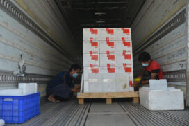 COVID-19 medical supplies continuously transported to regions/states