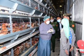 Shan State Chief Minister visits Shan Yoma livestock zone, Htonpo agricultural research farm