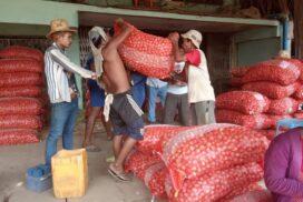 Myanmar exports dramatically plummet to $12.3 bln as of 23 Jul