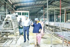 MIFER Minister inspects value-added investment agribusiness in Nay Pyi Taw