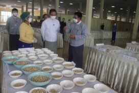 Production of Myanmar pearl exceeds expectations in 2020-2021