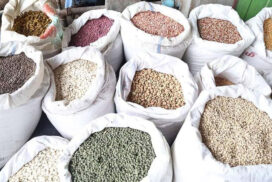 Over 1.75 mln tonnes of various pulses shipped in ten months (Oct-July)