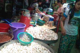 Garlic price rises because of high demand in local market