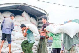 Myanmar rice export earns $661.4 mln in eleven months