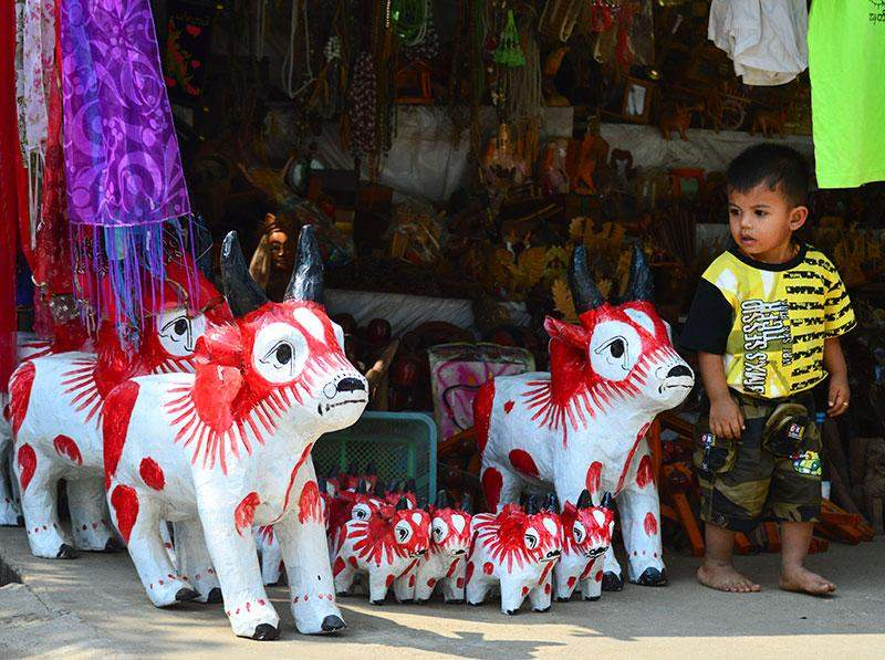 A child gazing at cow toys.
