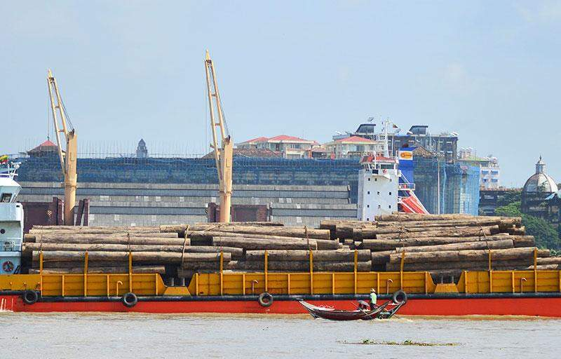 The government has suspended the export of timbers in April, 2014. Photo: Aye Min Soe