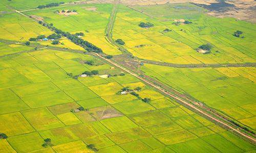 A bird's eye view of paddy fields near Yangon. In the previous fiscal year, Myanmar approved US $39.66 million worth of foreign direct investment in the country's agriculture sector.