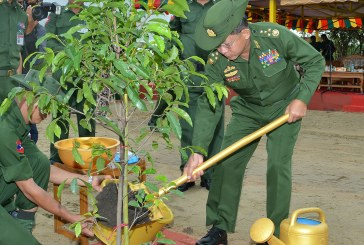 Senior General Min Aung Hlaing attends tree planting ceremony