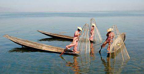 Fishermen use traditional fishing techniques on Inlay Lake. The large mountain lake located in Shan State was inscribed as the first biosphere reserve of Myanmar during meetings at UNESCO  headquarters in Paris on Tuesday. Photo: Myanmar Tourism Federation