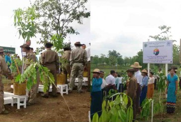 Planting ceremony marks World Environment Day