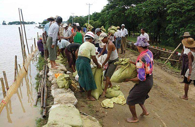 Volunteers lay sandbags on the bank of the Ayeyawady River in Myanaung to hold back rising waters.—Photo : Win Bo