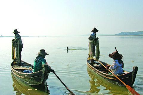 An Irrawaddy dolphin drives fish toward fishermen near Mandalay.