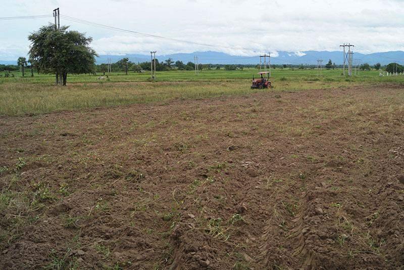 A farmer ploughs farmland with a tractor. Photo: Tin Soe Lwin (IPRD)
