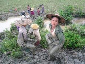 A Tat Lan, cash-for-work labourer from Yoe Sa Nwin village works to repair the village embankment following recent floods in Myanmar.  Photo: International Rescue Committee