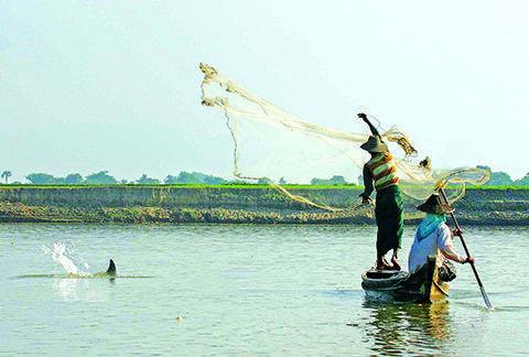 An Irrawaddy Dolphin approaches fishermen near Mandalay.
