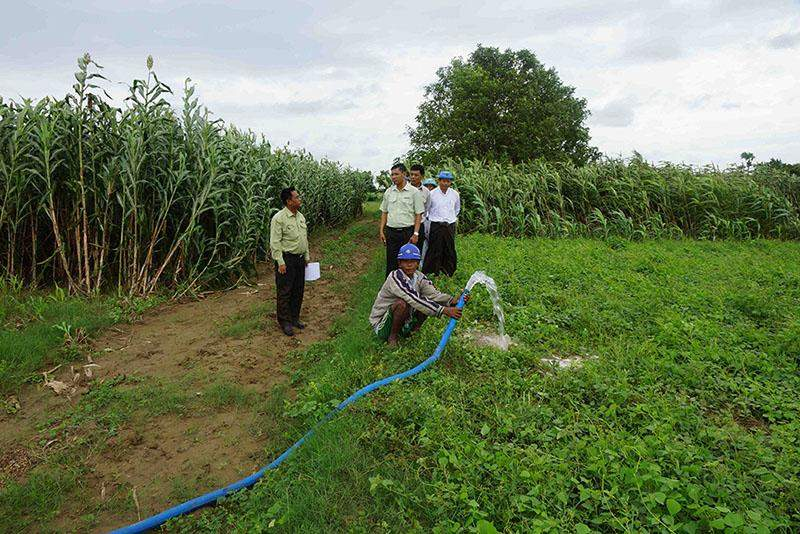 An official demonstrates use of water from tube-well at a cropland in Ngazun. Photo: Zaw Min Aung