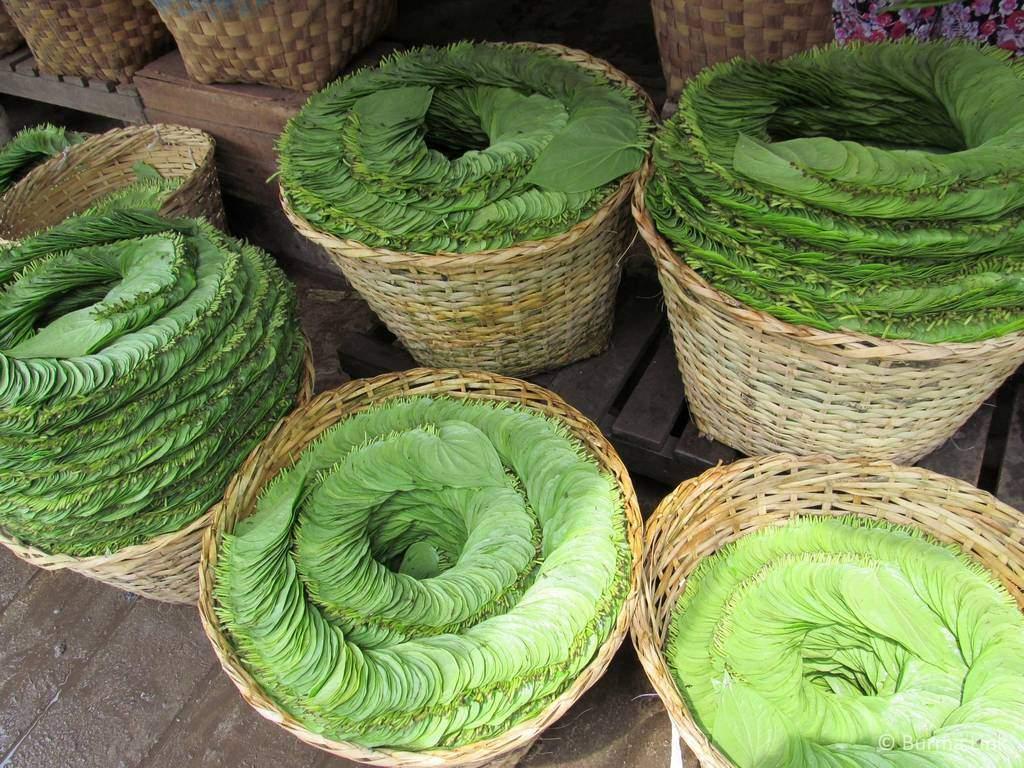 Betel leaves in Mandalay