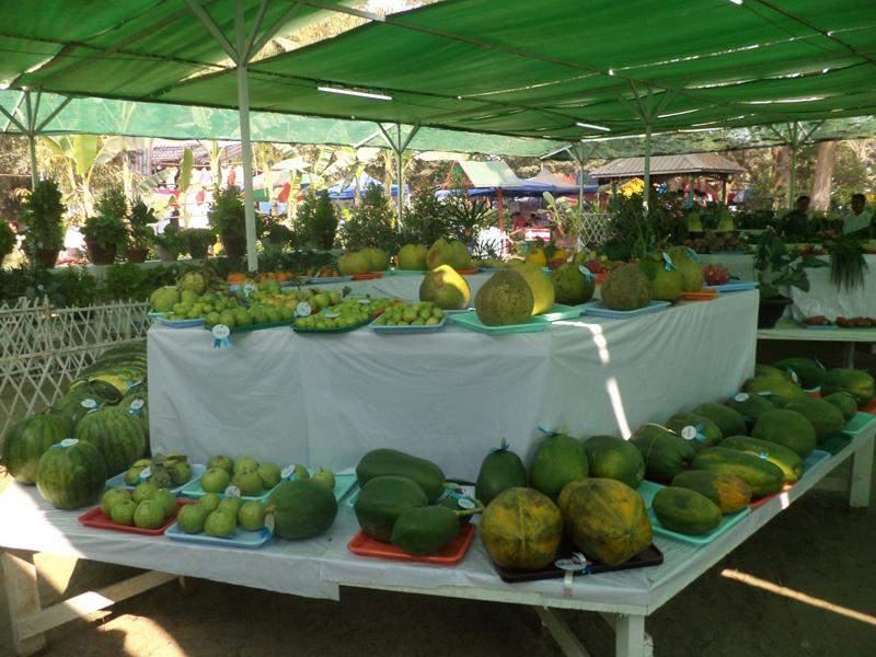 Fruits are displayed on the stand. Photo: Thiha Ko Ko (Mandalay)