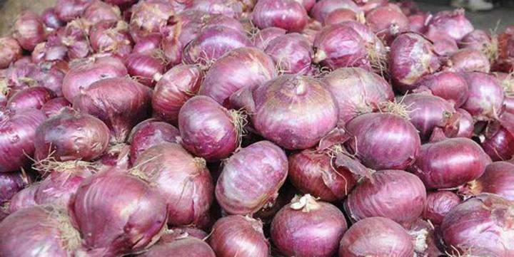 Onion farmers in upper Myanmar have earned high income from this year harvest as demand for the crop is high.