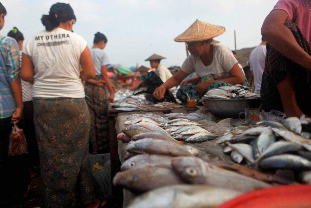 Vendors sell fish in Pauktaw in Rakhine State. Photo: Myitmakha News Agency