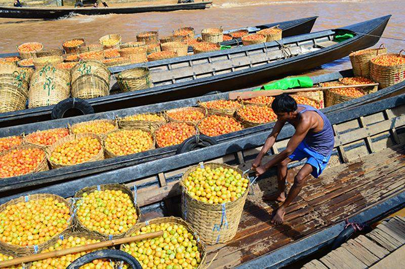Farmers in Inle Lake have been urged to reduce chemicals in growing crops on their floating island.