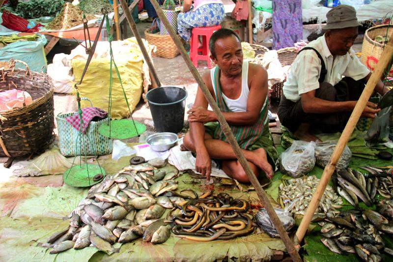A vendor sells fresh eels and fish at a market in Kalaw, southern Shan State. Photo: Jessica Mudditt
