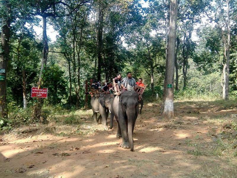 Pilgrims ride elephants on their way to Alaungtawkathapa Cave.