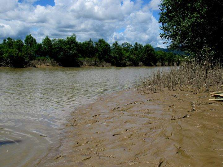 The sandbanks that slop up the rivers.