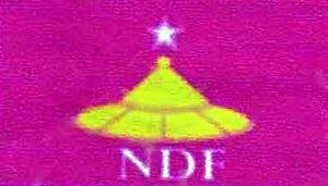 NDF logo copy