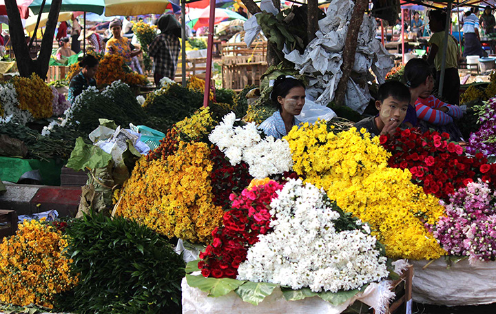 floewr1 Colorful flower bouquets for sale at the wholesale market. Photo Aye Min Soe copy