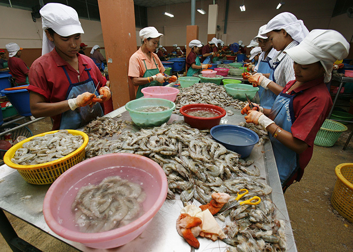 migrant workers in Thailand copy