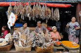 Dried fish prices on the rise in domestic market during fishing season
