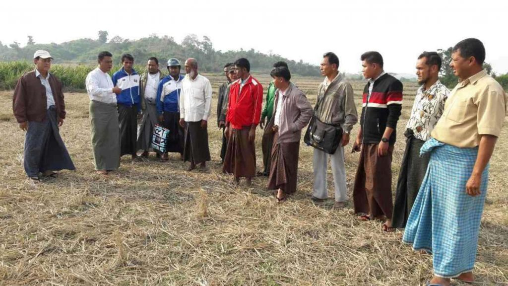 Authorities and local people inspect the mass grave reported in the Associated Press (AP) near Gu Dar Pyin Village in Buthidaung Township yesterday.Photo: Information Committee