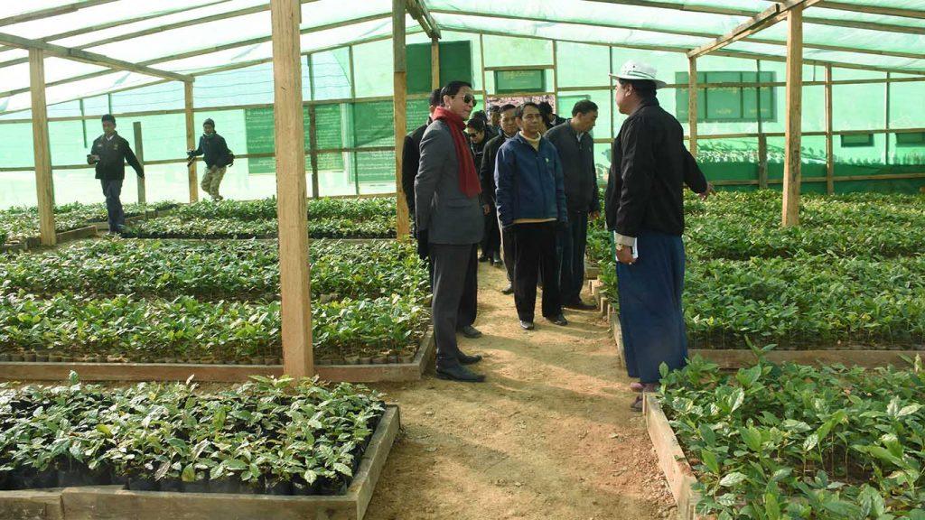 Vice President U Henry Van Thio and officials visit Tikir Village coffee tree nursery.Photo: MNA