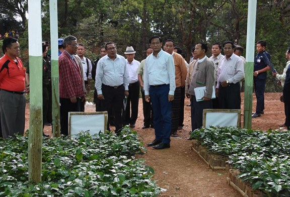 U Henry Van Thio inspects prevention projects in Sagaing, coffee in Chin