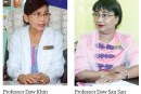 Historical milestone in Myanmar medical circle – Birth of a test tube baby