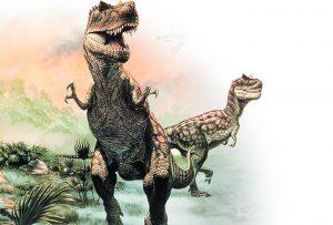 fossils 136 copy copy