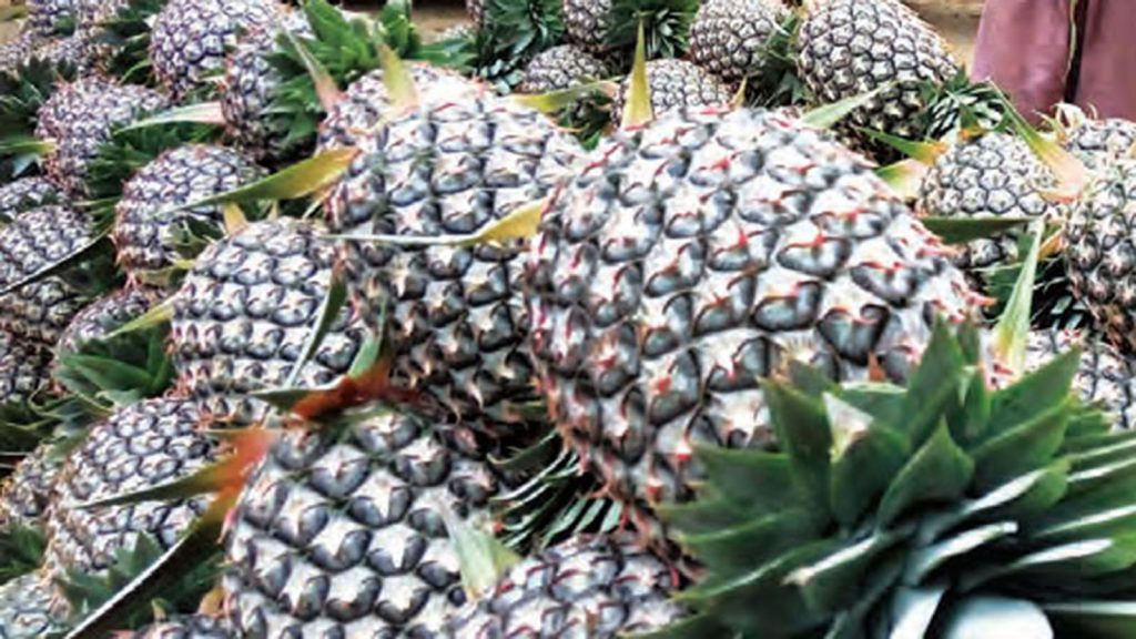 pineapple 7 72