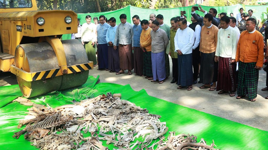 Union Minister U Ohn Win and officials attend the opening ceremony of the Elephant Museum in Yangon yesterday.Photo : MNA