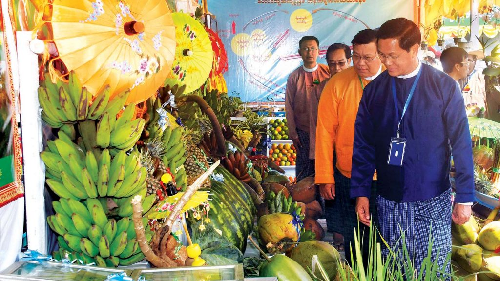Vice President U Henry Van Thio looks at agricultural products in commemoration of the 2019 Peasants Day at Taungsu Village in Eainme Township yesterday. Photo: MNA