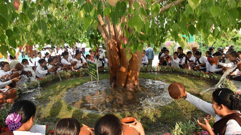 Buddhist devotees water the Bo Tree at Uppatasanti Pagoda in Nay Pyi Taw to mark Buddha Day which falls on the Full Moon Day of Kasone.Photo Kyaw Ye Swe