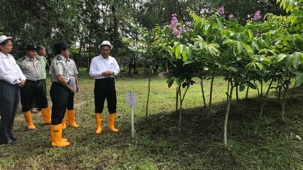 Union Minister U Ohn Win inspects the pilot cultivation for bio-fuel in North Dagon Township, Yangon yesterday.Photo: MNA