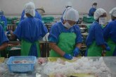 Fishery exports top $610 mln in current fiscal
